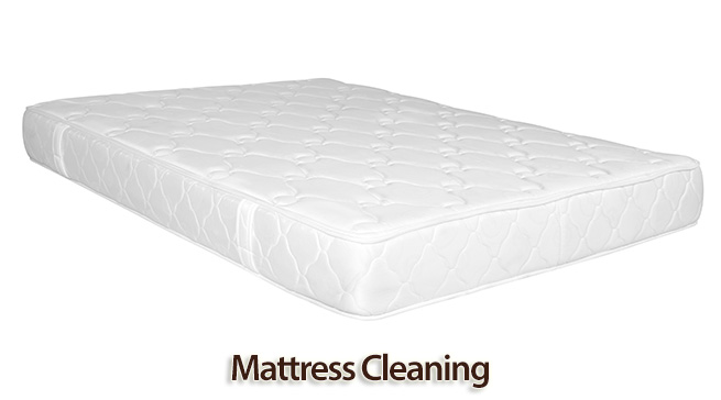 how to thoroughly clean a mattress